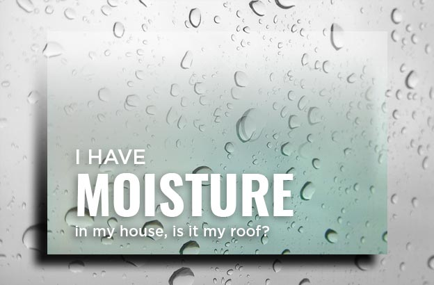 Moisture House Roof