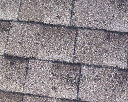 calgary hail damage roof
