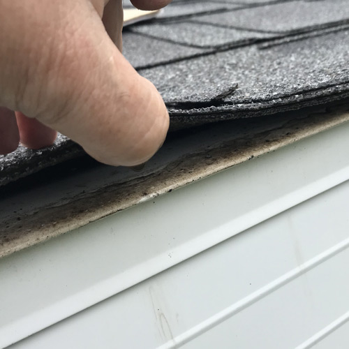 Roofing Stettler inspection